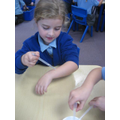 Science investigation on the sense of 'touch'