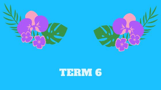 Term 6