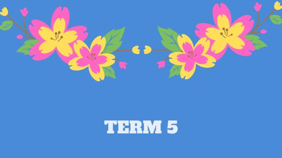 Term 5