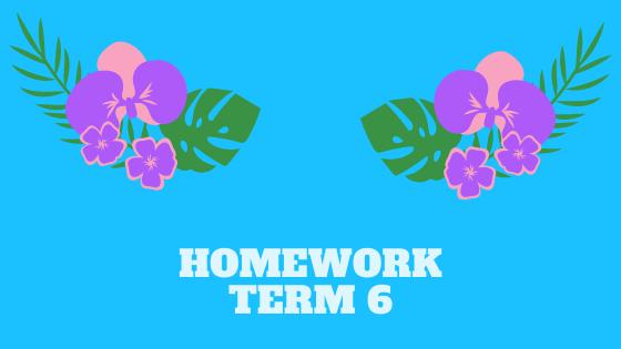 Homework term 6