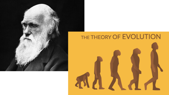 Photographic portrait of Charles Darwin and artistic depiction of the theory of evolution.
