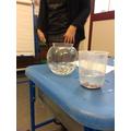 Raisins in soda water experiment