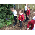 Exploring the plants in the garden