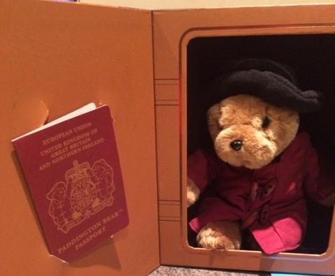 Paddington ready in his suitcase.