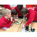 Investigating solids