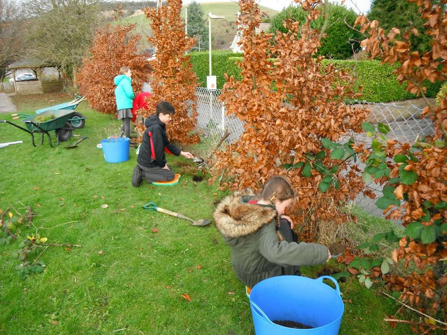 Planting Trees from the Woodland Trust October 16