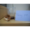 Fizzy pop makes the shell crack and turn brown.