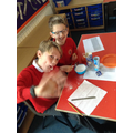 We used table salt and bicarbonate of soda...