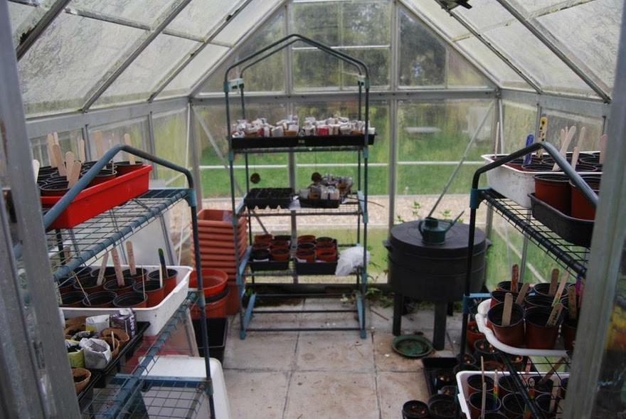 Our greenhouse full of newly planted pots