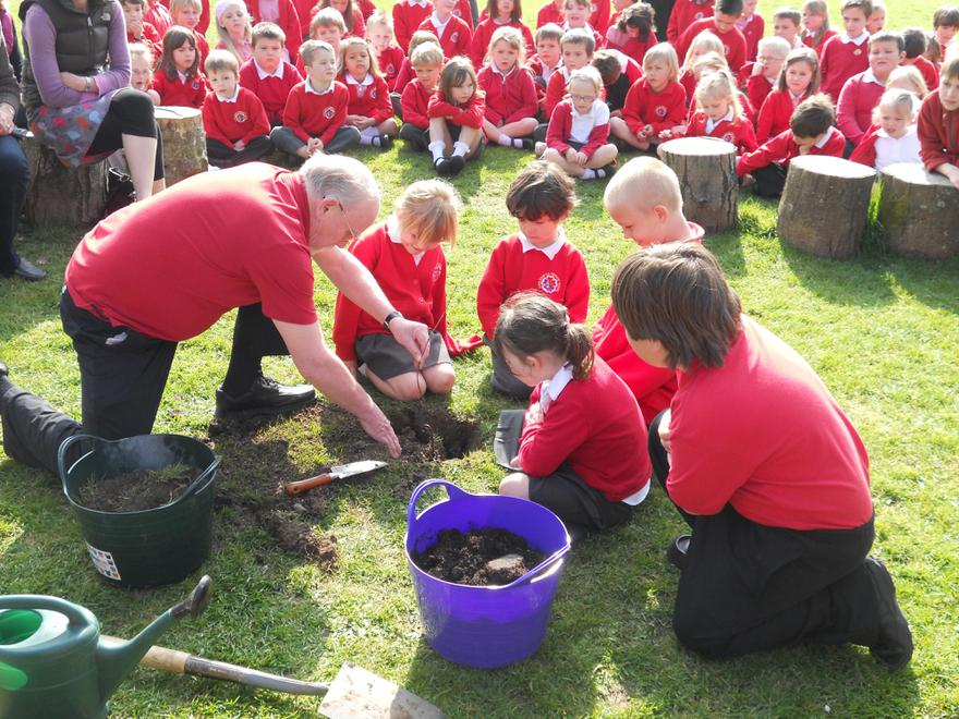 We planted our Jubilee Tree as a whole school.