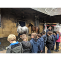Annual Year 5 Mulberry Farm Visit
