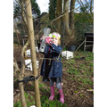 Weekly Forest School