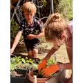Jasper and Isobelle repotting more seedlings