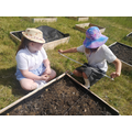 Dividing our beds into squares so that every child can grow a crop.