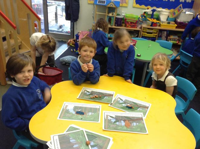 Learning about the life cycle of a caterpillar