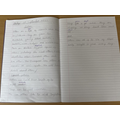 We have been writing about otters this week.