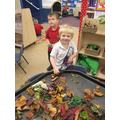Exploring our autumn treasures!