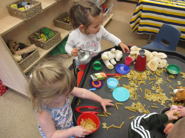 Feeding our animals pasta!