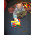 Building Pudsey a home