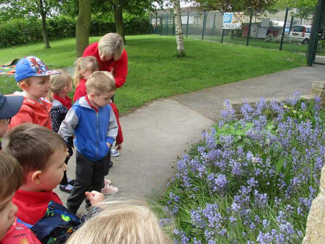 We went on a walk around the school grounds!
