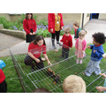 Two kind pupils took the Guinea Pigs out for us!