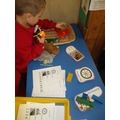 sorting, counting and recording amounts of toys