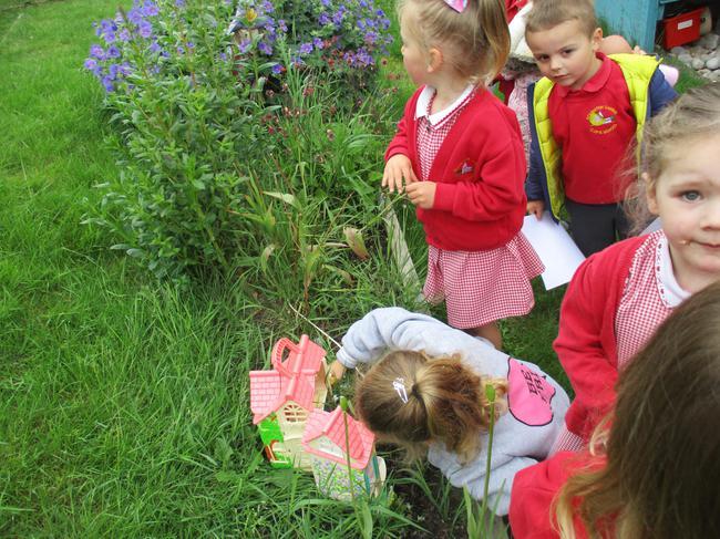 Small world: Fairy garden