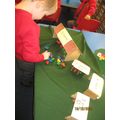 Counting and sorting animals