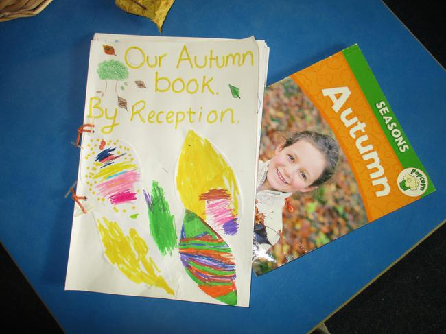 We made an information book about Autumn