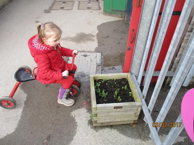 I wonder what flowers will grow from the shoots?
