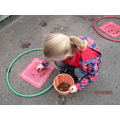 Putting the correct number of acorns on the correct number