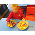 Estimating, counting and developing fine moror skills