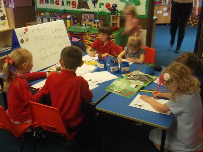 Writing - How to spot a lion!