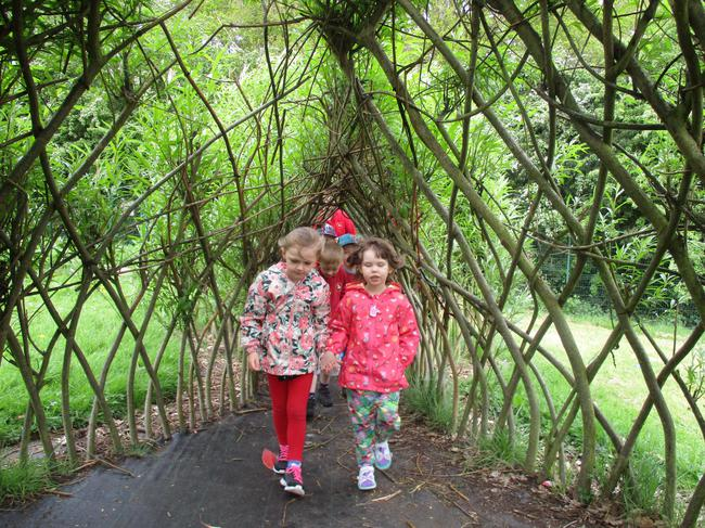 Willow arch!