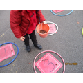 Counting conkers into sets