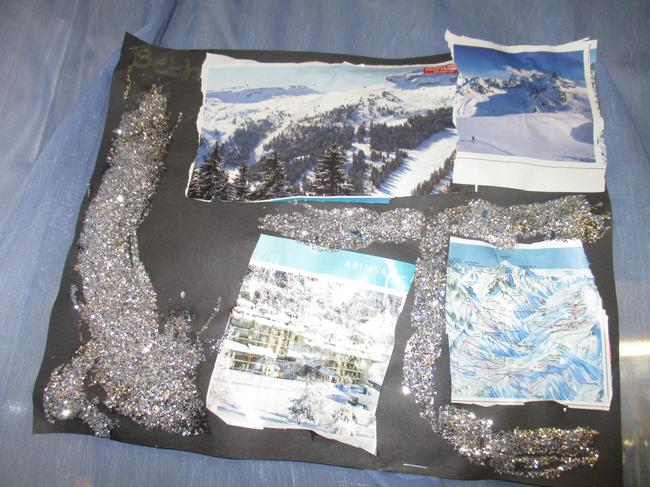 We looked at snowy countries in brochures.