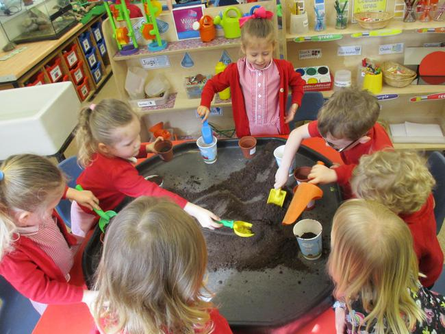 Planting beans and seeds!