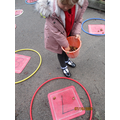 Putting numbers in order outside on the playground