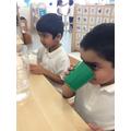 Science taste experiment