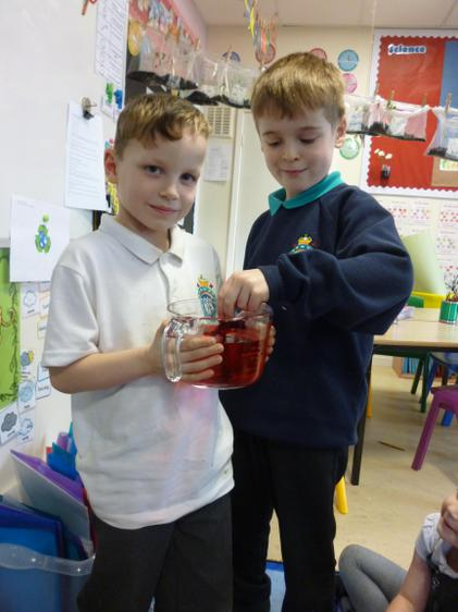 Josh and Toby mixed the coloured water.