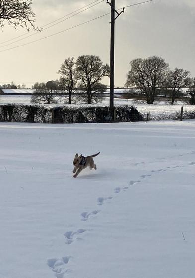Pippa Running