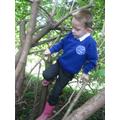 Tree climbing fun.