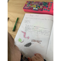 A great report from your bug hunt! Well done!