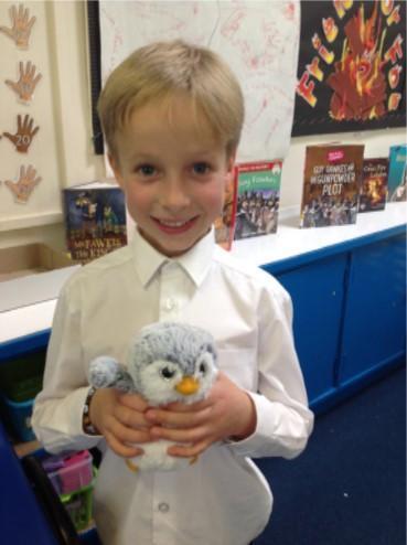 Snow - Cherry Class Penguin