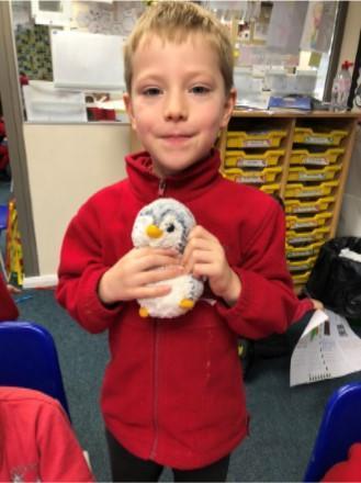 Pop - Holly Class Penguin