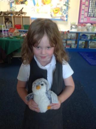 Pingu - Saplings Class Penguin