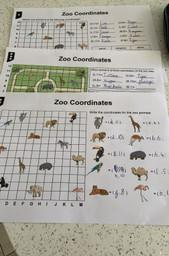 Libby's Zoo co-ordinate work