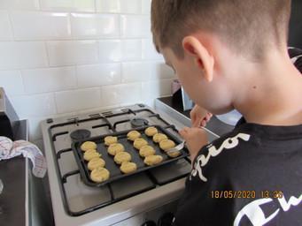 Noah's Biscuits