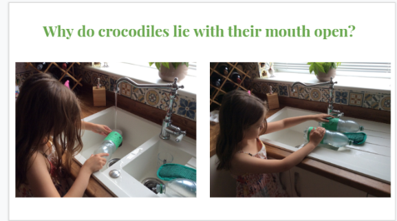 Annie did a science experiment to find out why crocodiles lie with their mouths open!