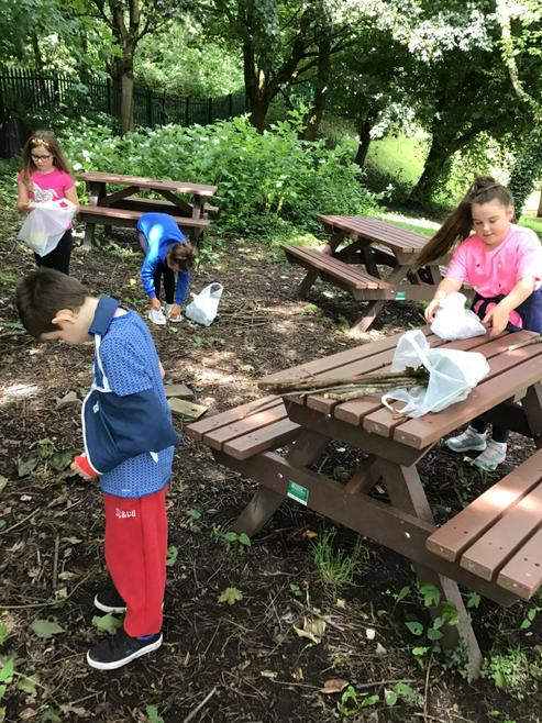 Tuesday group collecting natural materials